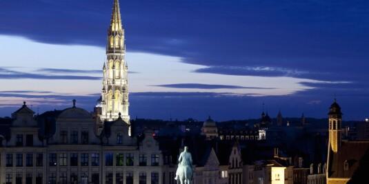 Image: Måtte stoppe sexfest i Brüssel