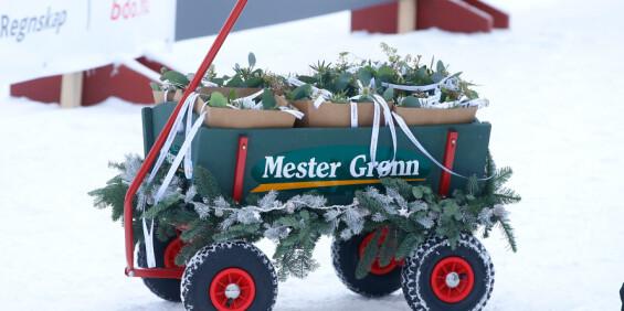 Image: Mester Grønn permitterer 530 ansatte
