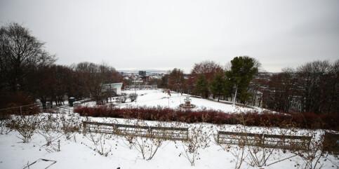 Image: Vegvesenet advarer om krevende kjøreforhold på Østlandet etter snøfall