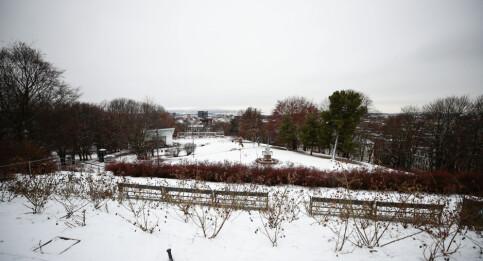 Image: Nå kommer snøen igjen
