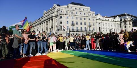 Image: Ungarns lov mot «promotering av homofili» vekker bekymring hos EU