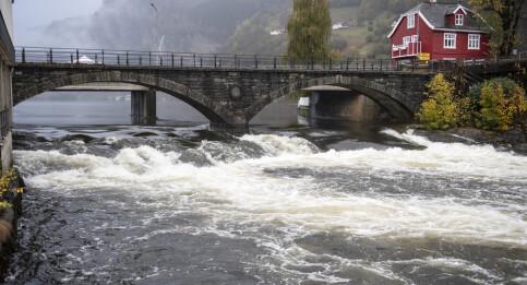 Image: Leteaksjonen i Kvam: Redningshunder markerte ved vann