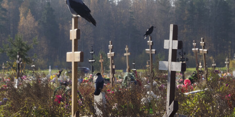 Image: Flere smittes og dør i Europa
